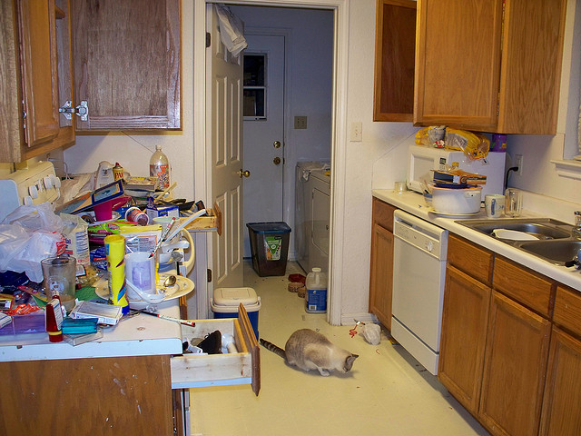 Disaster Kitchen